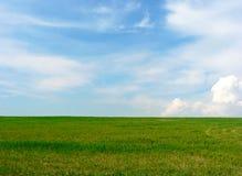 Prado verde e céu azul Fotos de Stock