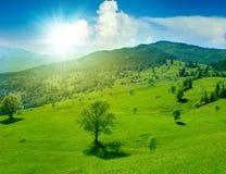 Prado verde fantástico en montaña Fotografía de archivo