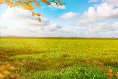 Prado verde hermoso Paisaje del otoño Cielo azul nublado Bandera del fondo fotografía de archivo