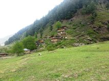 Prado verde luxúria com as casas de madeira tradicionais Foto de Stock Royalty Free