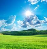 Prado verde na montanha Imagens de Stock