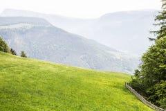 Prado verde nas montanhas de Alto Adige imagem de stock