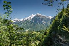 Prado verde no fundo coberto de neve das montanhas em cumes suíços fotografia de stock