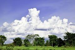 Prado verde, nuvens brancas, céu azul Foto de Stock