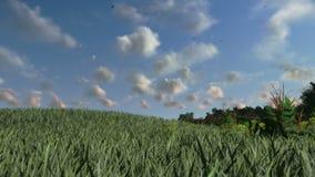 Prado verde, nuvens do lapso de tempo, cenário do campo, metragem conservada em estoque ilustração do vetor