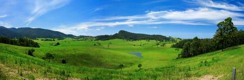 Prado verde rodante Imagen de archivo libre de regalías