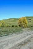 prado y camino unsurfaced Fotos de archivo