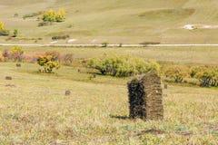 prado y camino unsurfaced Imagen de archivo libre de regalías
