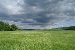 Prado y las nubes de lluvia dramáticas oscuras Imagen de archivo libre de regalías