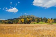 Prado y montaña Imagen de archivo