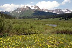 Prado y montaña de Colorado Fotos de archivo