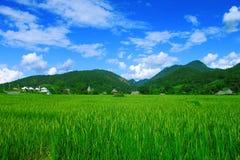 Prado y montaña Tailandia Imagen de archivo