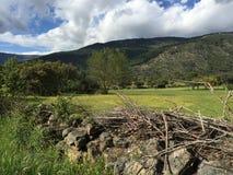 Prado y montaña verdes Fotografía de archivo