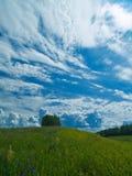Prado y nubes verticales Foto de archivo