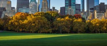 Prado y rascacielos de las ovejas del Central Park en caída Nueva York Fotografía de archivo libre de regalías