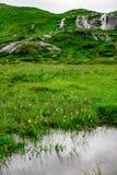 Prado y un pequeño río con la opinión de la cascada Foto de archivo