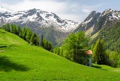 Prados alpinos Imagens de Stock Royalty Free