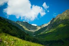 Prados alpinos Imagem de Stock