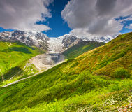 Prados alpinos en el pie del glaciar de Tetnuldi Imagen de archivo libre de regalías