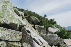 Prados alpinos Taganay Foto de archivo libre de regalías