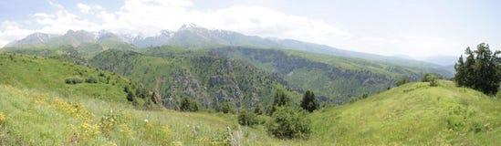 Prados altamente nas montanhas imagens de stock royalty free