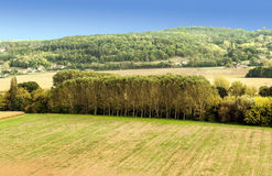 Prados Aquitaine France foto de archivo libre de regalías