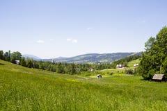 Prados, bosques y campos en Zakopane Imagen de archivo