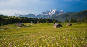 Prados das cabanas da montanha com as flores amarelas nas dolomites no por do sol Imagem de Stock