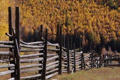 Prados de la aldea de Hemu Imagen de archivo
