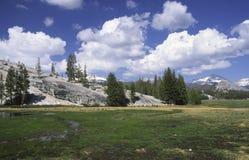 Prados de Tuolumne en Yosemite fotografía de archivo libre de regalías