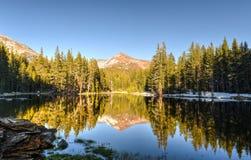 Prados de Tuolumne, parque de Yosemite foto de stock