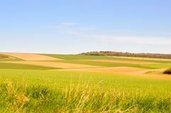 Prados e colheitas Fotografia de Stock