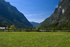Prados e montanhas alpinos Imagens de Stock