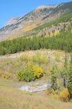 Prados e montanhas alpinos Fotos de Stock Royalty Free