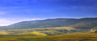 Prados nas montanhas Imagem de Stock