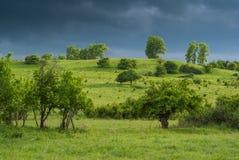 Prados verdes debajo del cielo del trueno Imagen de archivo libre de regalías