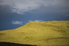 Prados verdes en día tempestuoso en la salida del sol, paso de Giau, dolomías, VE Foto de archivo