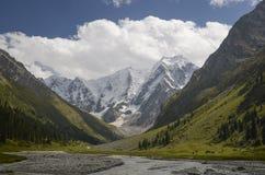 Prados verdes en un fondo de los picos de montaña Fotos de archivo