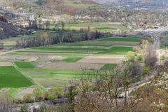 Prados verdes hermosos de la primavera Fotos de archivo