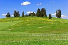Prados verdes no fundo montanhoso da paisagem fotografia de stock royalty free