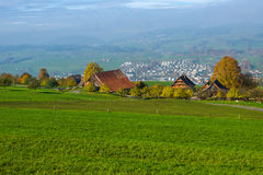 Prados verdes sobre el lago Alfalfa, cerca del soporte Rigi, montañas, Suiza Foto de archivo libre de regalías