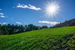 Prados verdes y cielo azul, sunstar, Umbría, Italia Imagenes de archivo