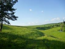 Prados verdes y cielo hermoso Foto de archivo libre de regalías