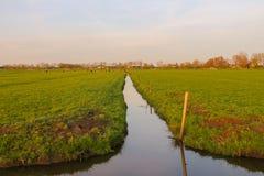 Prados verdes y el canal cerca de la granja en Países Bajos Foto de archivo libre de regalías