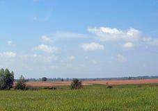 Prados verdes y el cielo nublado Foto de archivo