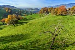 Prados verdes y pueblo típico de Suiza cerca de la ciudad de Interlaken Fotos de archivo libres de regalías