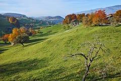Prados verdes y pueblo típico de Suiza cerca de la ciudad de Interlaken Foto de archivo