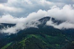 Prados y árboles de pino verdes en la niebla y las nubes Montañas de las montan@as Fotografía de archivo libre de regalías