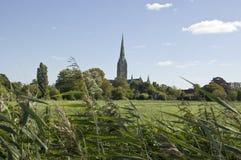 Prados y catedral, Salisbury del agua Fotografía de archivo libre de regalías