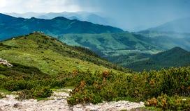 Prados y montañas verdes Fotos de archivo libres de regalías